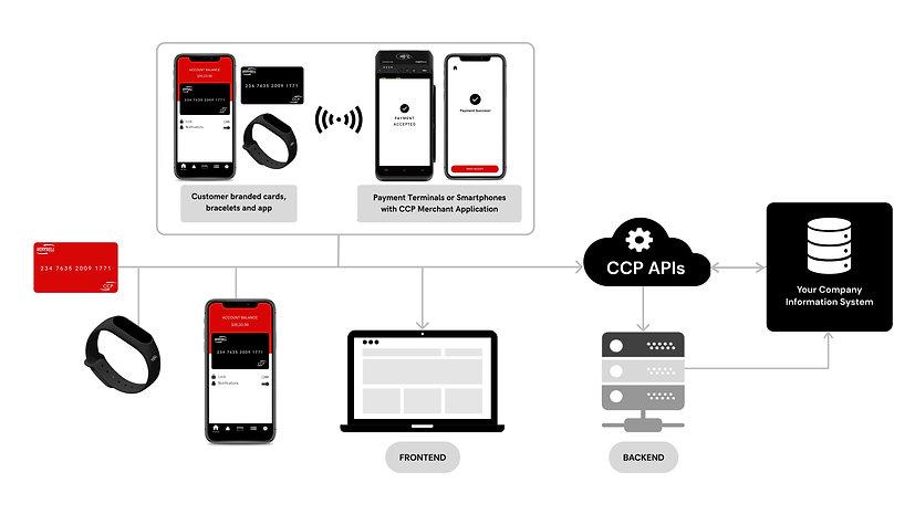 CCP Diagram.jpg