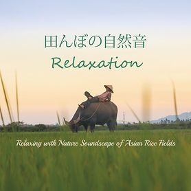 nature sounds relaxing meditation healing calming soothing sleep