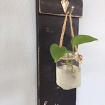 Hanging candle / plant holder wall sconce - $40
