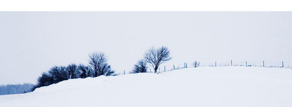 paysage d'hiver.jpg