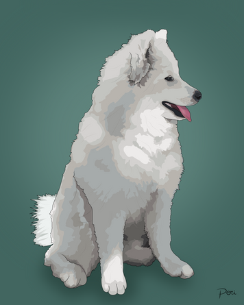 Commissioned Dog and Graphic-- Adobe Illustrator