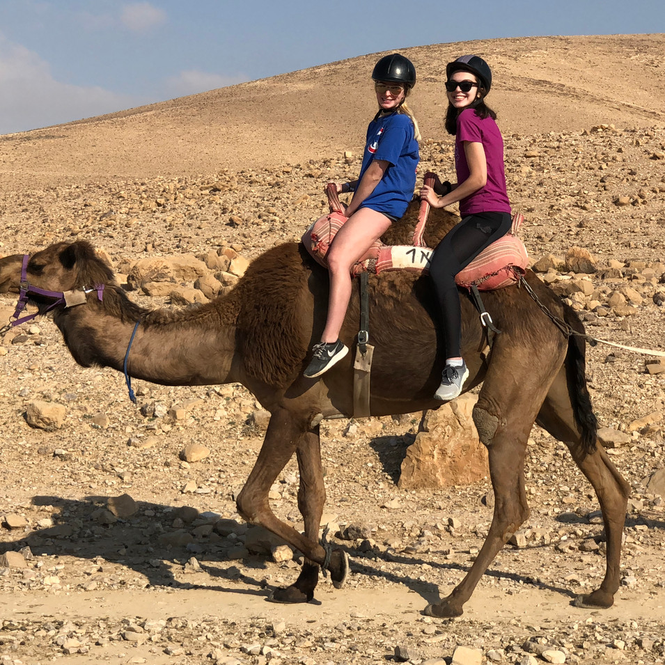 UW Hillel students on camel in the Negev Desert