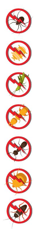 Pest Control healthy pest free living