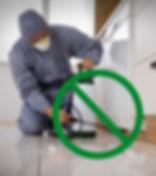 No spray pest control, health safe eco-friendly