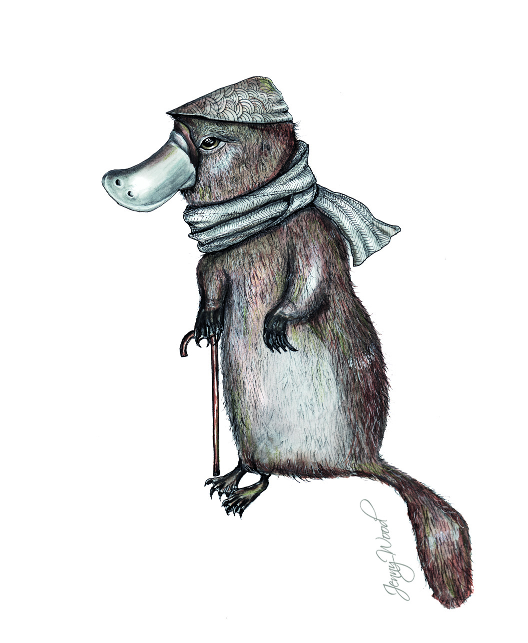 Mr platypus