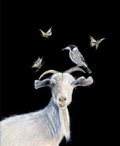 Goat and butcher bird print