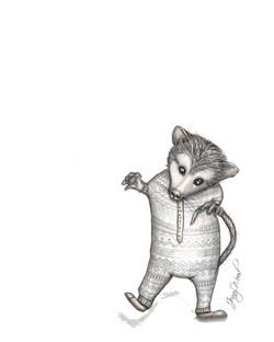 Ringo possum
