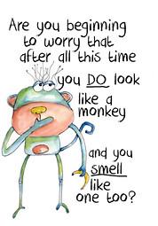 Smelly Monkey 35941