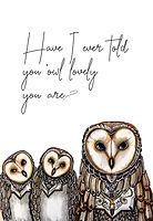 Owl lovely.jpg