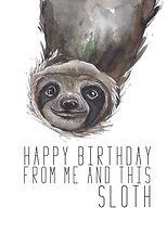 Birthday sloth.jpg