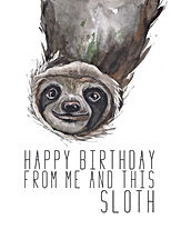Birthday sloth.jpg