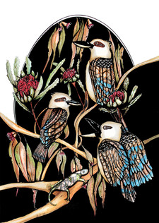 Kookaburra trio A4 $10
