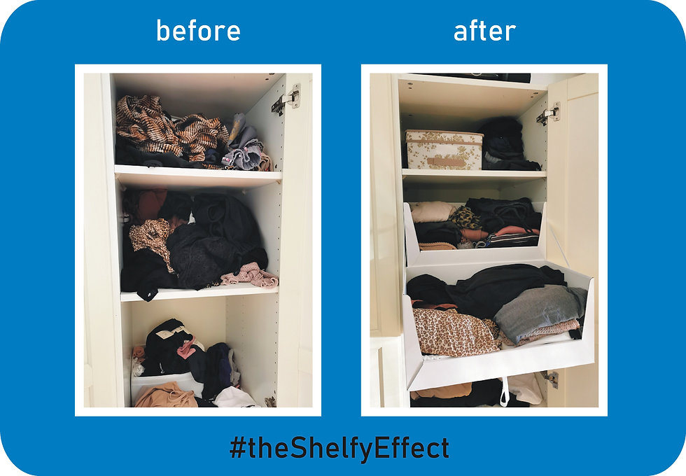 theShelfyEffect.jpg