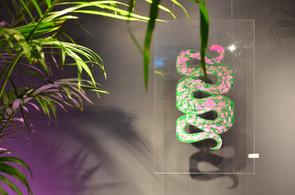 Snake by Lily Lotz