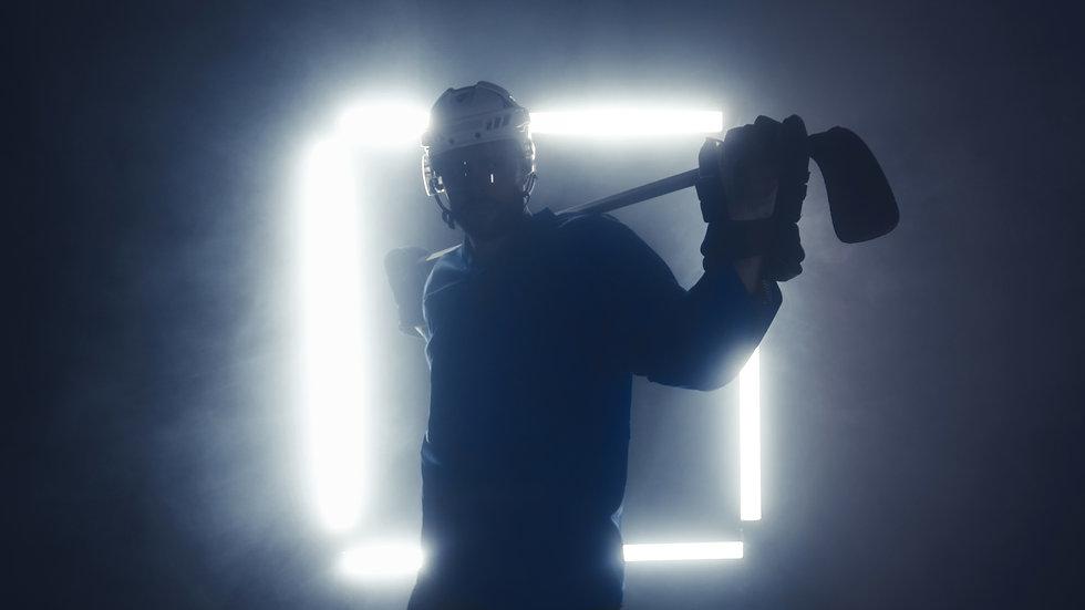 NordicHockeyManagementlander2.jpg