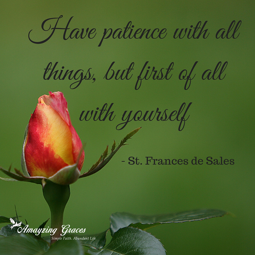 Have patience with all things, but first of all with yourself, St. Frances de Sales, Fruits of the Spirit, Holy Spirit, Karen May, Amayzing Graces