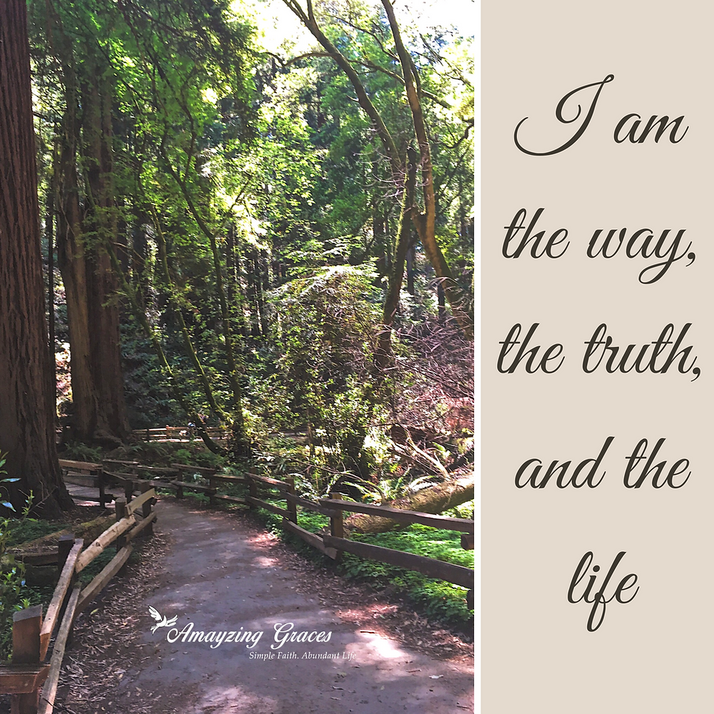 I am the way, the truth, and the life, Karen May, Amayzing Graces