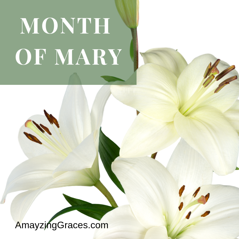 Month of Mary, Karen May, Amayzing Graces