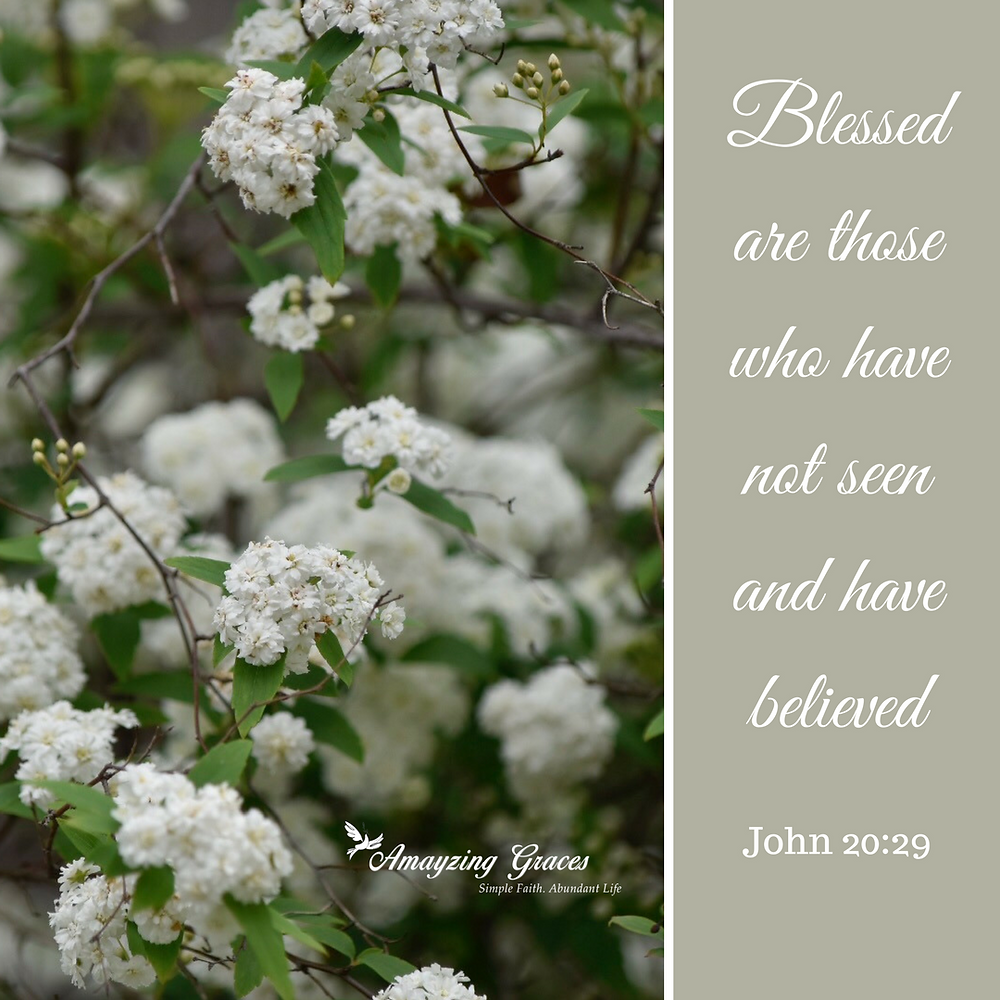 Blessed are those who have not seen and have believed, John 20_29, Karen May, Amayzing Graces