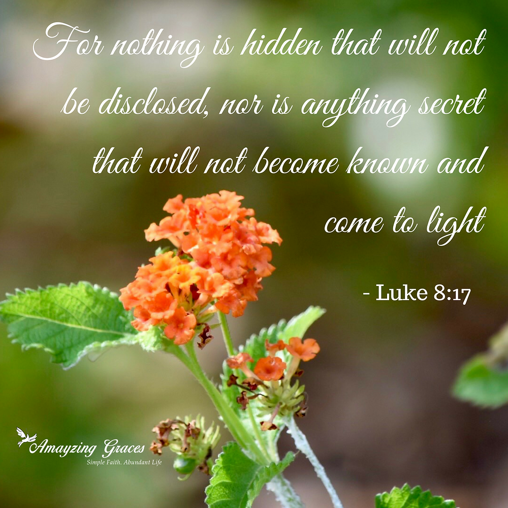 For nothing is hidden that will not be disclosed, nor is anything secret that will not become known and come to light, Karen May, Amayzing Graces