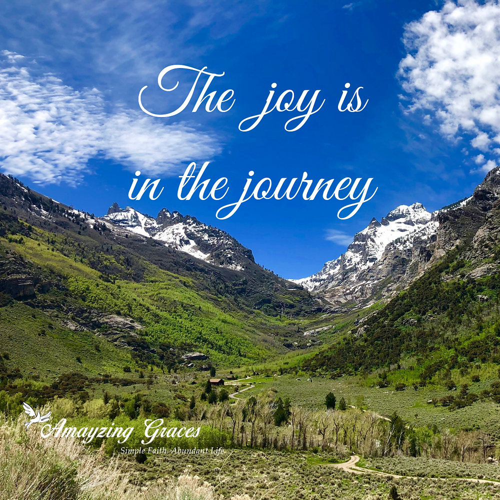 Joy in the journey, inspirational quote, hope, faith, Karen May, Amayzing Graces
