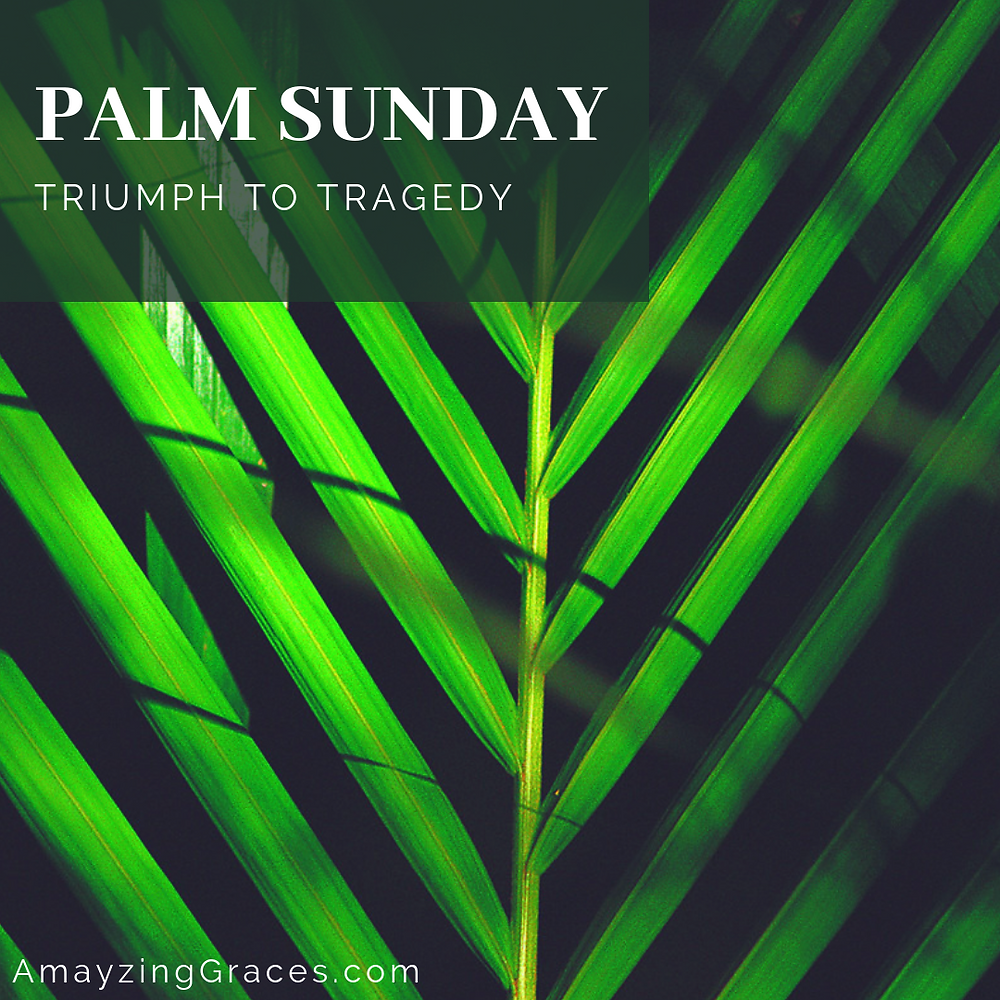 Palm Sunday, From Triumph to Tragedy, Holy Week, Karen May, Amayzing Graces