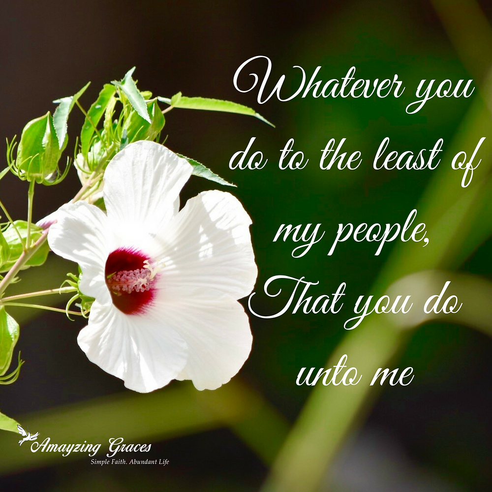 Whatever you do to the least of my people,That you do unto me, Karen May, Amayzing Graces, flower, inspiration