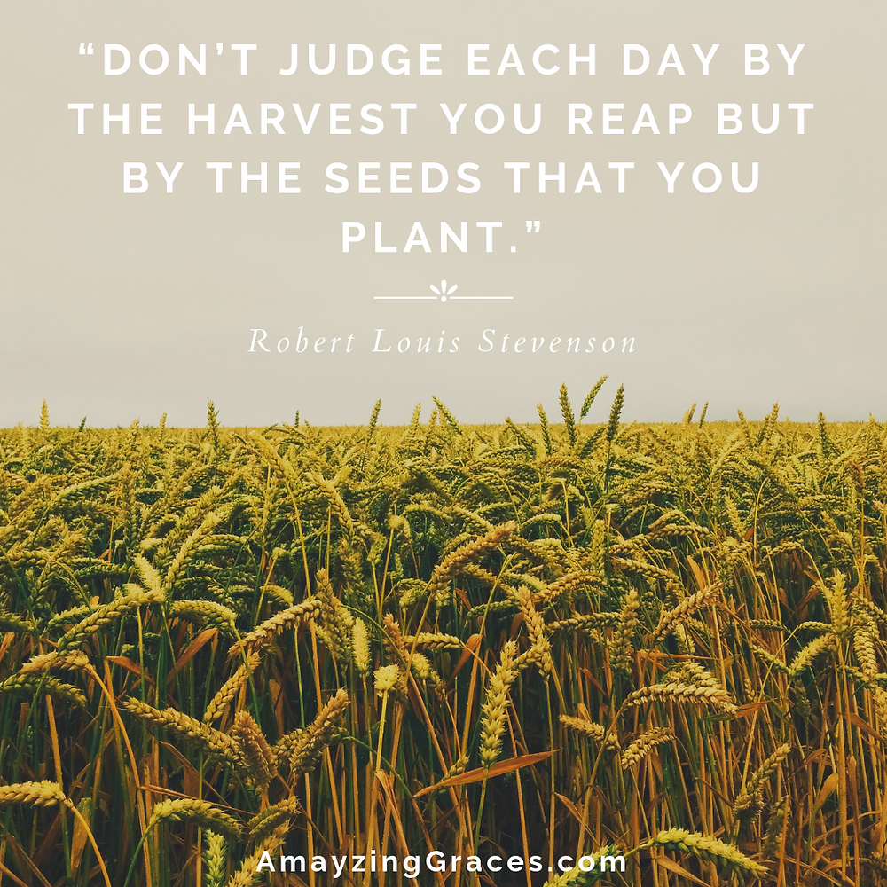 Don't judge each day by the harvest you reap but by the seeds that you plant, Robert Louis Stevenson, Amayzing Graces, Karen May