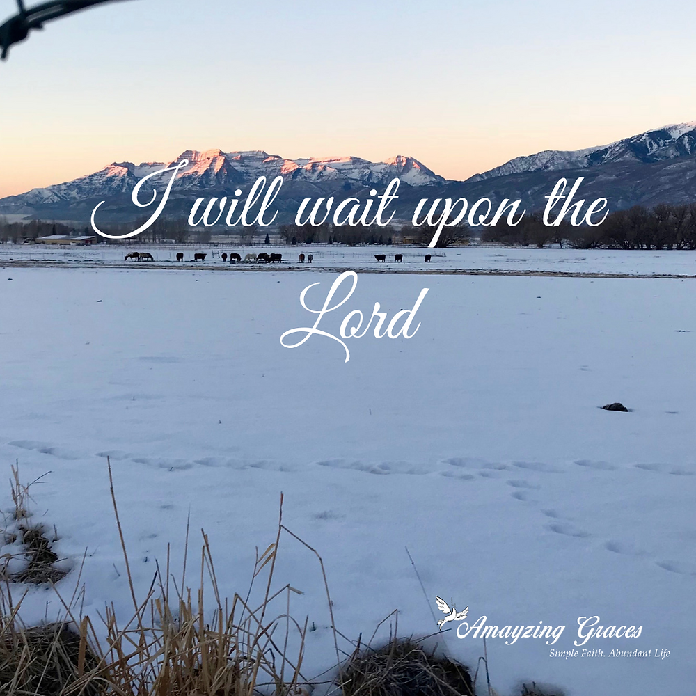 I will wait upon the Lord, Advent, Jesus, Karen May, Amayzing Graces, Christmas