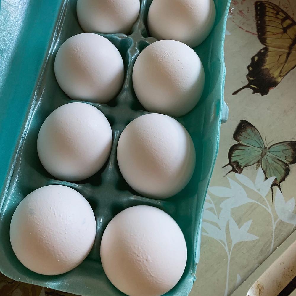 eggs, Karen May, Amayzing Graces