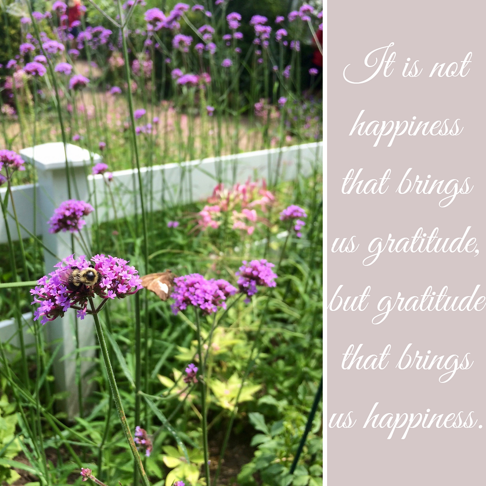It is not happiness that brings us gratitude, but gratitude that brings us happiness. Karen May, Amayzing Graces