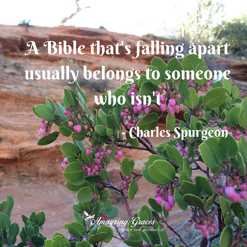 A Bible that's falling apart usually belongs to someone who isn't, Charles Spurgeon, Karen May, Amayzing Graces