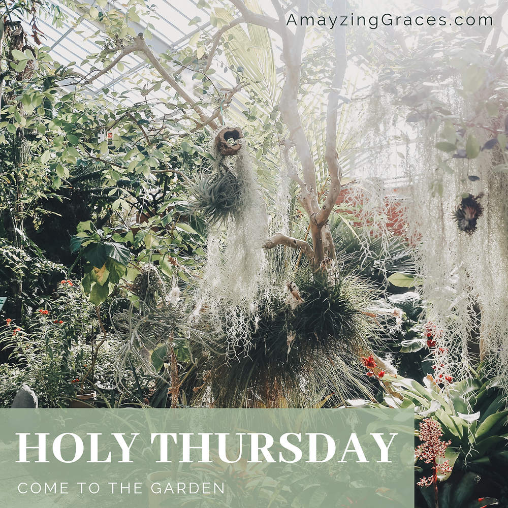Holy Thursday, Come to the Garden, Karen May, Amayzing Graces, Walking Through Holy Week