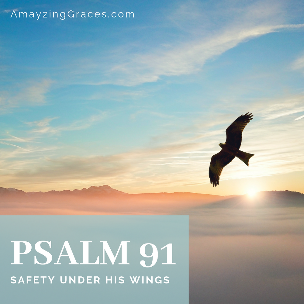 Psalm 91, Safety under His wings, Karen May, Amayzing Graces