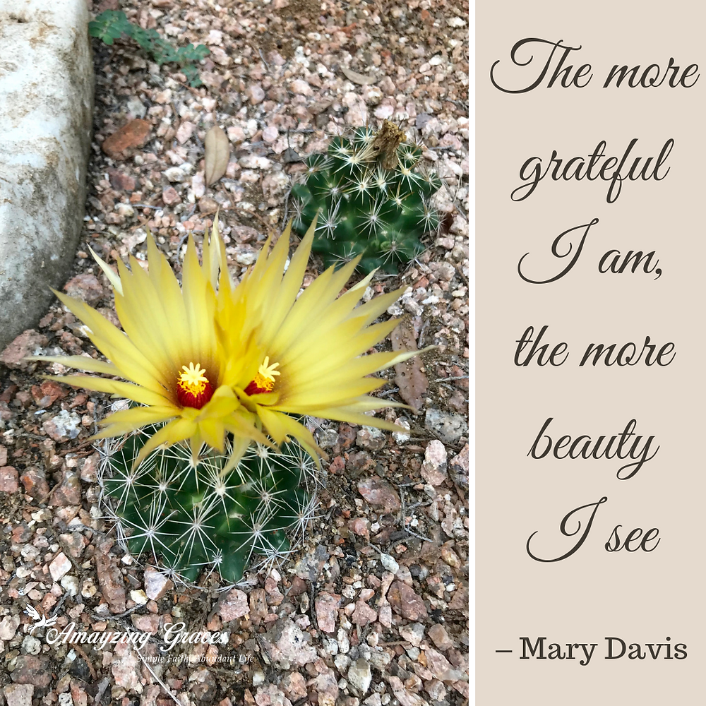 The more grateful I am, the more beauty I see, Mary Davis, Karen May, Amayzing Graces