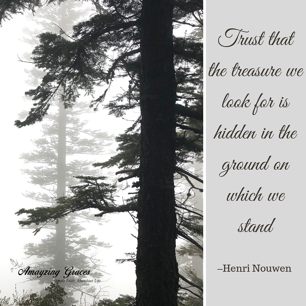 Trust that the treasure we look for is hidden in the ground on which we stand, Henri Nouwen, Amayzing Graces, Karen May