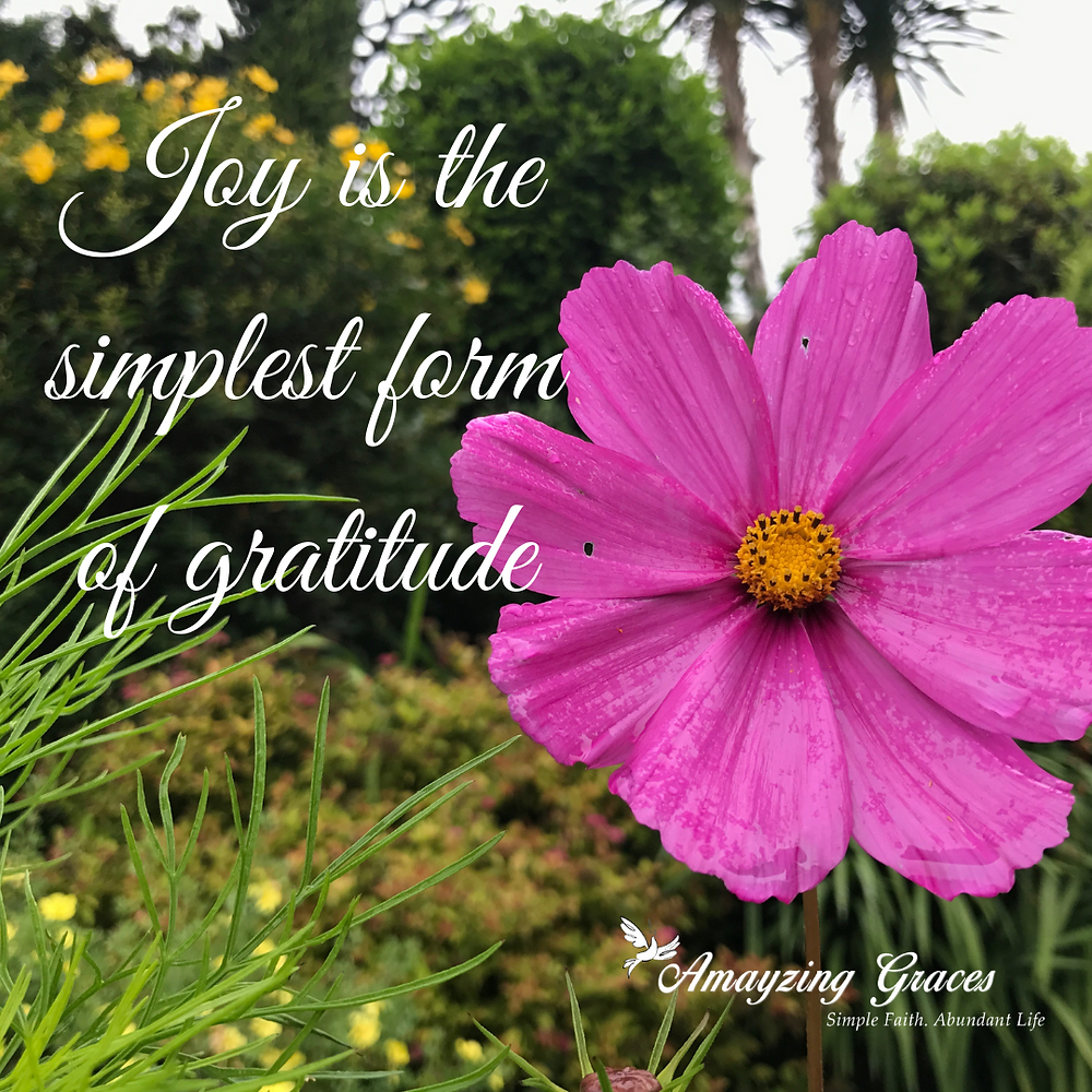 Joy is the simplest form of gratitude, Karen May, Amayzing Grace