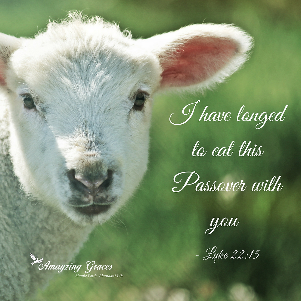 I have longed to eat this Passover with you - Luke 22_15, Holy Thursday, Holy Week, Easter, Lent, Walking Through Holy Week, Karen May, Amayzing Graces