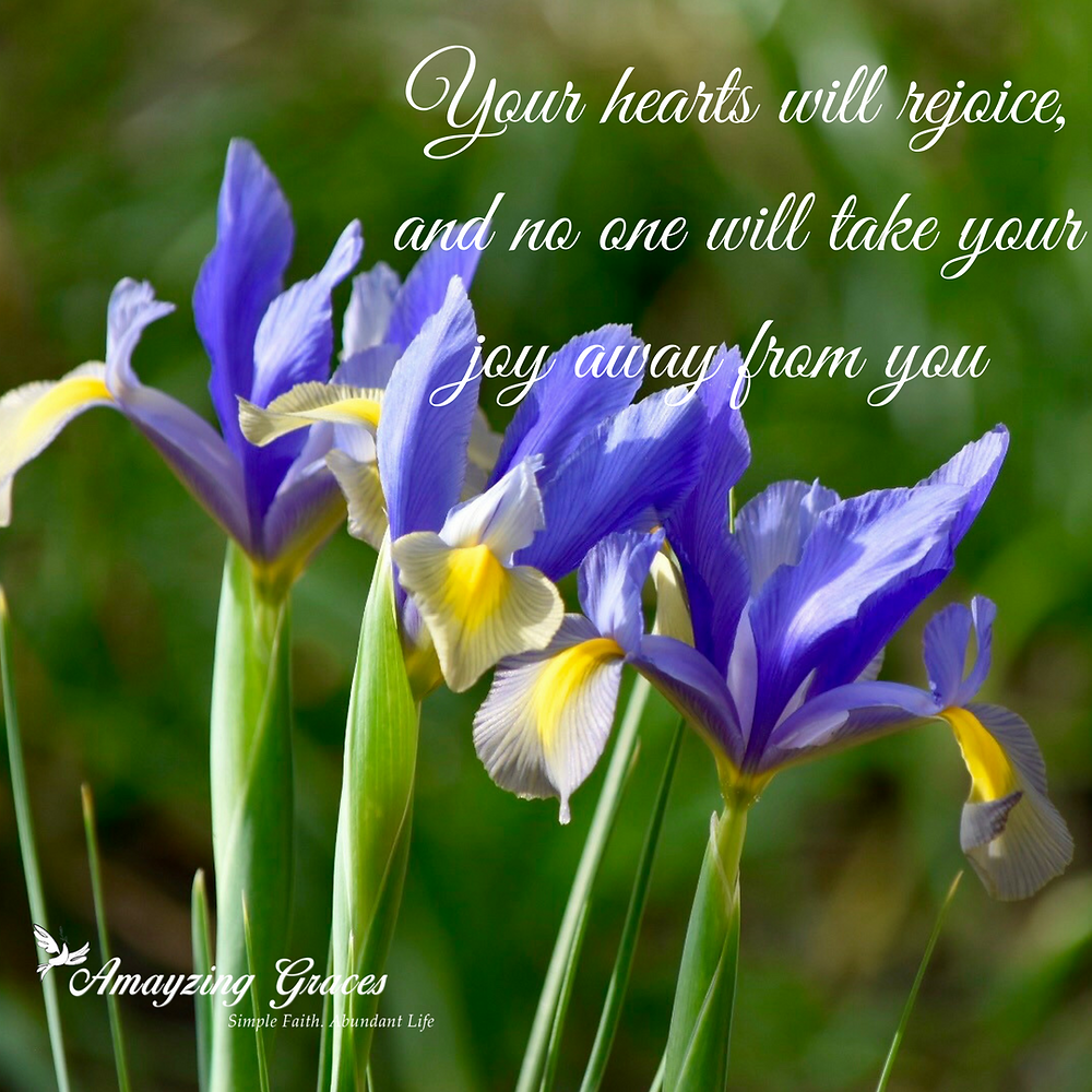 Your hearts will rejoice, and no one will take your joy away from you, John 16:22, Karen May, Amayzing Graces