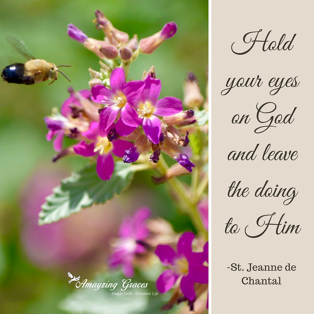 Hold your eyes on God and leave the doing to Him- St. Jeanne de Chantal, Karen May, Amayzing Graces