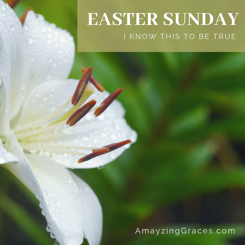 Easter Sunday, I know this to be true, Karen May, Amayzing Graces, Walking Through Holy Week