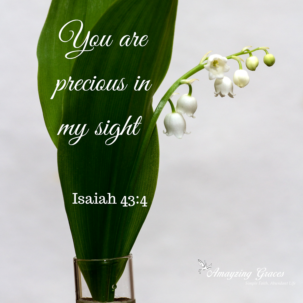 You are precious in my sight, Isaiah 43:4, Karen May, Amayzing Graces