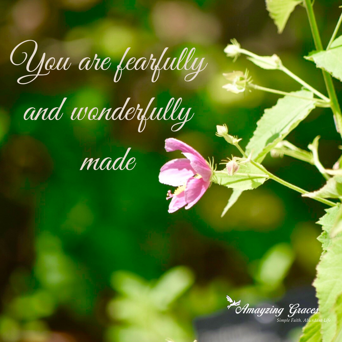 Fruits of the Spirit: Modesty
