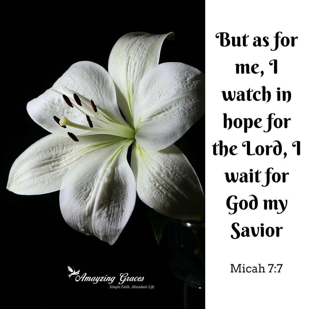 But as for me, I watch in hope for the LORD, I wait for God my Savior, Micah 7_7, Holy Saturday, Holy Week, Walking Through Holy Week, Lent, Easter, Karen May, Amayzing Graces
