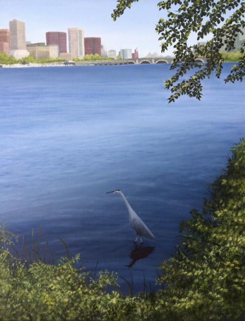 Boston Great Blue