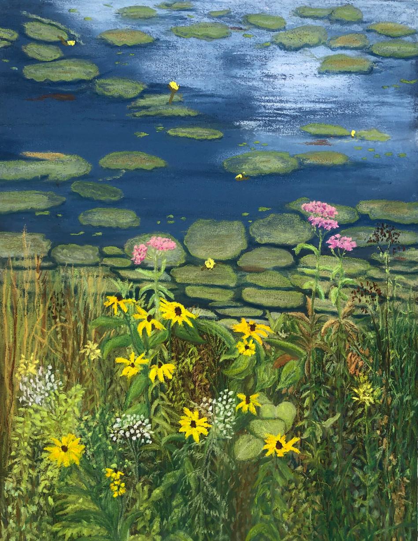 Becket Woods Pond Garden