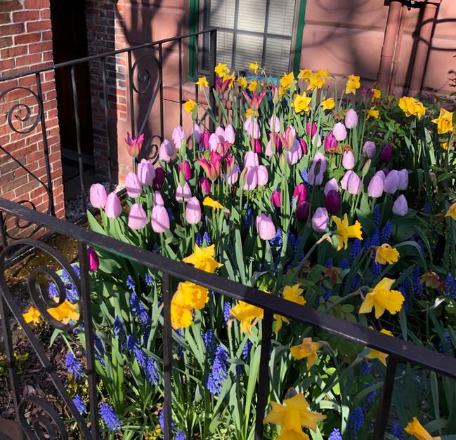 City Garden: Spring