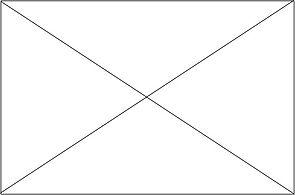 Placeholder - Rectangle.jpg