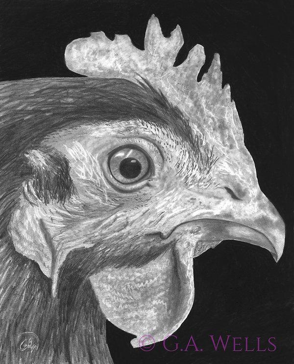 Kitchen Chicken WM.jpg