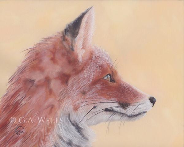 fox head WM.jpg